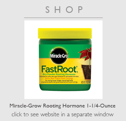 Buy Rooting hormone product
