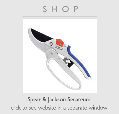 Buy new Secateurs