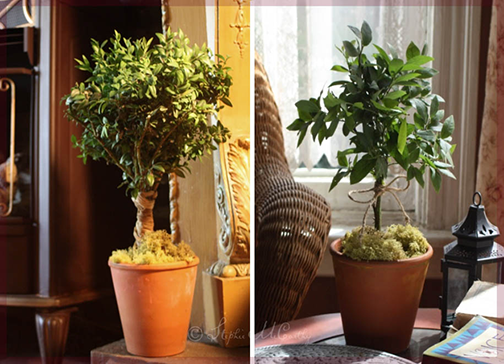 Topiaries from living branches by Stephie McCarthy