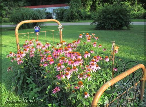 Planted Bed Frame by Jeannie Rhodes
