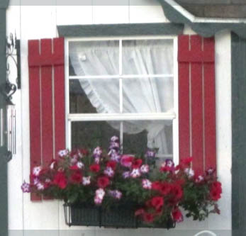 She shed window box